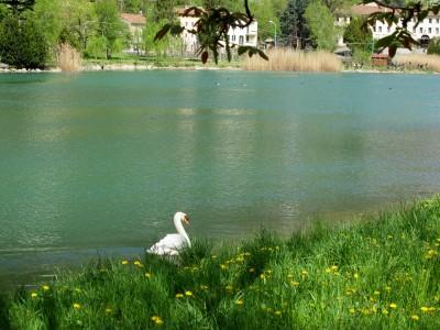 I laghetti di Negrisiola, visti dai Prati di Savassa, poco lontano dall'Agriturismo Azienda Agricola Livieri Alessandro.
