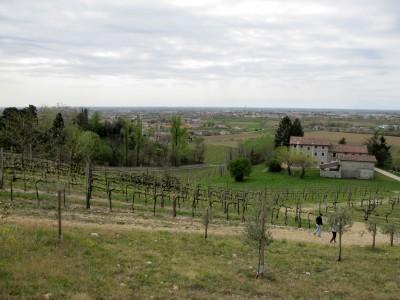 Trail del Patriarca, panorama