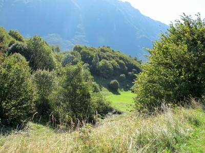 Dal borgo di sopra al borgo di sotto, lungo la valletta consigliataci. Prati, sole, pendenza leggera. Una meraviglia!