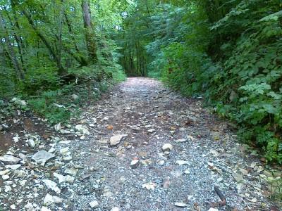 La sterrata o sentiero per i Brent de l'Art, provenendo da località Zelant (strada per Signa).