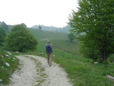 Si rientra accompagnati da una leggera pioggia. Siamo sulla cima del Pizzoc ma presto lungo l'altavia 6 ci addentreremo nella Foresta del Cansiglio.