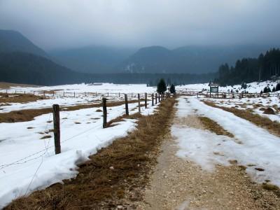 Un ultimo sguardo verso Piano di Valmenera. Qui lasciamo la strada e seguiamo il breve sentiero che porta all'agriturismo Malga Valmenera.