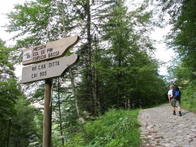 Eccoci all'inizio del sentiero 905 per rifugio Casera Ditta. E' pomeriggio inoltrato, ma per cena saremo di sicuro con le gambe sotto al tavolo!