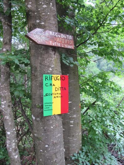 Sentiero Africa: dopo aver aggirato l'area franosa sul 905, questo nuovo tratto di sentiero (2009) conduce a Casera Ditta. Un grazie agli ospiti Africani di Casera Ditta, che hanno collaborato alla realizzazione del tracciato!