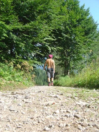 La zona piana dei Piani di Van: prati, strade sterrate e qualche pino... Bucolico!