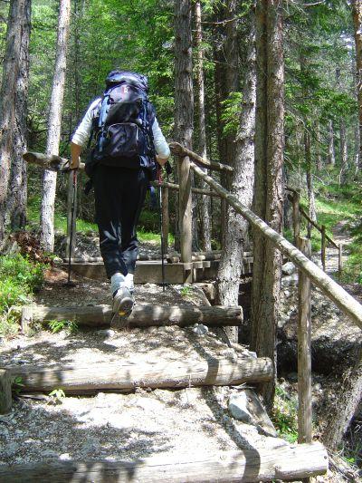Salita in bosco lungo il segnavia 408, da Pian De Ra Spines al Passo Posporcora.