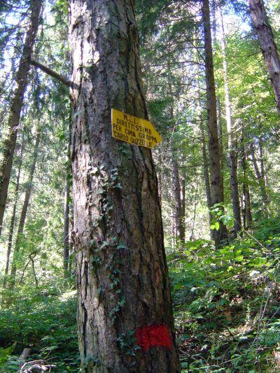 Ecco l'insegna che segnala l'inizio del sentiero nel bosco. Noi ce la siamo lasciata sfuggire. Una distrazione che ci è costata un'oretta buona di giri a vuoto.