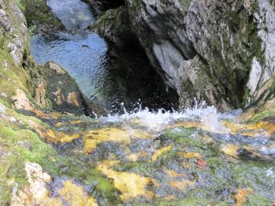 Una foto la merita pure il torrente che esce dal laghetto, gettandosi rapido fra una serie di piccoli salti tra i massi muschiosi.
