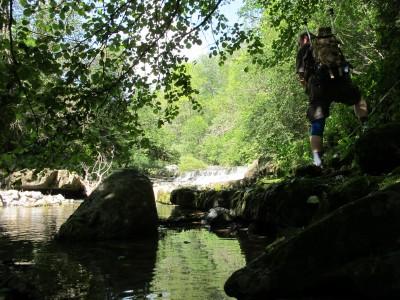 Tra fresche frasche, acqua limpida e piccole cascate, il torrente Picchions è meraviglioso da risalire.