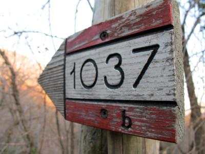 Segnaletica 1037b per avvicinarsi alle Grotte del Caglieron da sud.