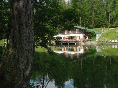 Il rifugio lago d'Ajal visto dalla sponda opposta del lago, all'ombra di uno splendido larice.