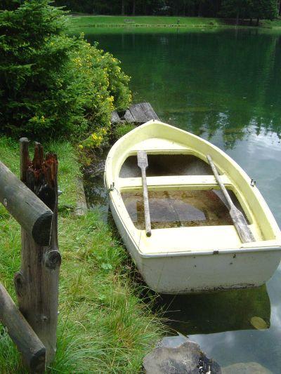 """Un scorcio """"bucolico"""" sulle sponde del lago di Pianoze."""