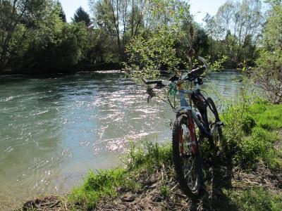 Le rive della Livenza, poco oltre la fine della parte sterrata con cui si chiude Via Argine ad Albina.