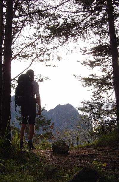 Escursione a Malga Alvis, nel Parco delle Dolomiti Bellunesi.