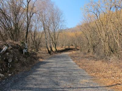 Uno scorcio lungo la strada che sale da Mezzomonte.