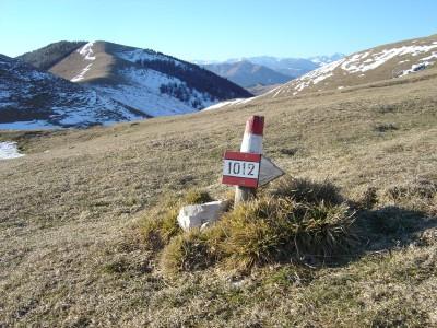 Micro segnavia del CAI in zona Colle Ortigher.