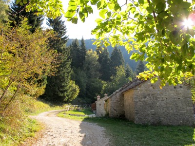 Lasciamo l'auto presso le Case Monvecchio, ma non sarebbe permesso, meglio partire da Passo San Boldo.