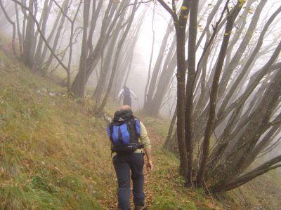 Prima salita su sentiero, dopo la parte cementata. Il tempo non promette bene.