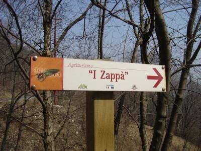 """Monte Tomba: la salita perde di pendenza e si addentra in bosco. Qui s'incrocia l'indicazione per l'agriturismo """" I Zappa' """". In caso di fame sapete che c'e' quest'ancora di salvezza!"""