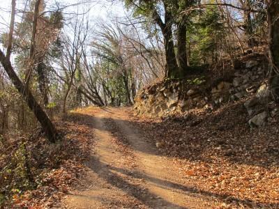 L'ottimo sentiero, nella parte più alta. I colori dell'autunno avanzato.