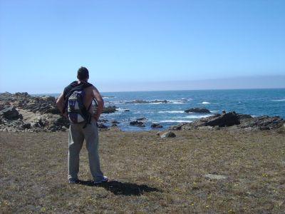 In riva all'Oceano Pacifico per la parte finale del percorso. Alla base delle scogliere, colonie di foche al sole.