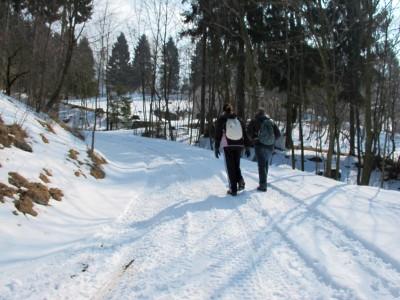 Saliamo su strada inizialmente asfaltata, poi cementata ed infine sterrata. Oggi un leggero manto di neve copre la prima parte del sentiero (segnavia 990)