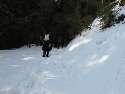 La seconda parte del sentiero è molto più immersa nel bosco e molto più ricca di neve fresca!