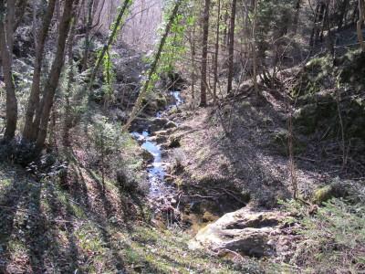 Ci concediamo di investigare alcune tracce di sentiero, convinti che la gita verso San Gaetano non ci prenderà molto tempo.