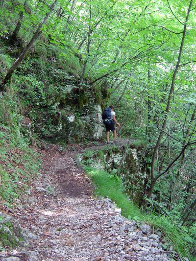 La prima parte del percorso diviene presto un buon sentiero lasciando piu' a valle le iniziali sembianze di sterrata.