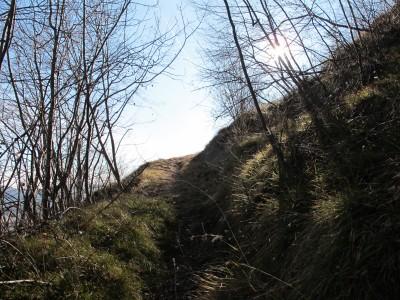 Si sale. Sentiero Zanin è un sentiero che alterna spesso salite a forti salite. Pochi i tratti tranquilli.