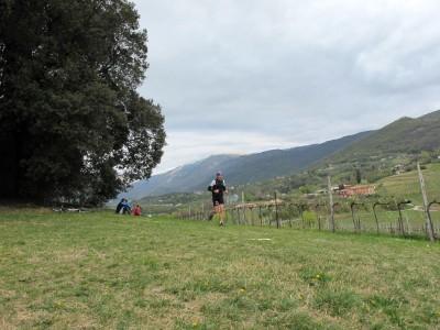 Trail del Patriarca, bosco dei lecci