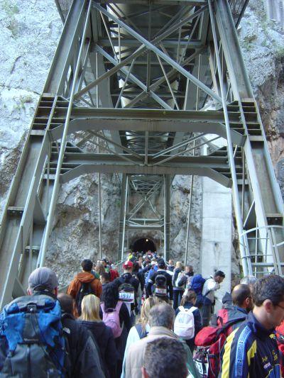 La folla che attraversa Ponte Tubo, fra ammirazione e curiosità.