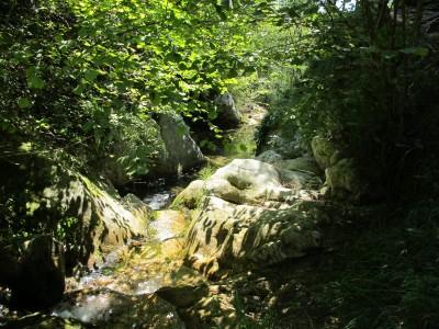Gioioso, il torrente Rujo tiene grande compagnia al nostro andare. Incantevole. Sarà il sole, sarà il bosco, sarà l'acqua ...