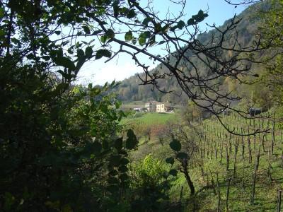 Vista sulle Perdonanze dalla zona di Sant Antonio.