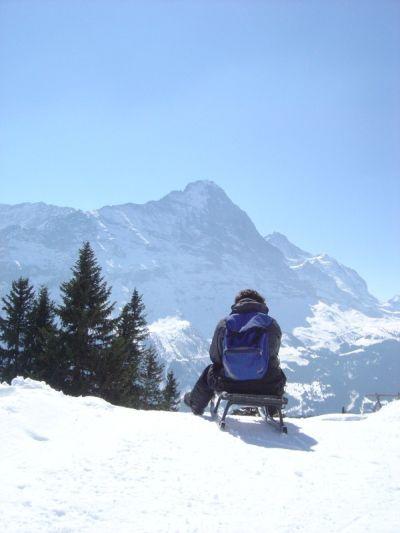 Pronti sullo slittino, si riparte dopo una breve pausa panoramica presso una baita... Grindelwald arriviamo!