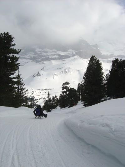 Ecco uno dei tanti tratti di pista per slittino. Qui ogni mattina il fondo di tutte le piste per slittino viene battuto e preparato con il gatto delle nevi.