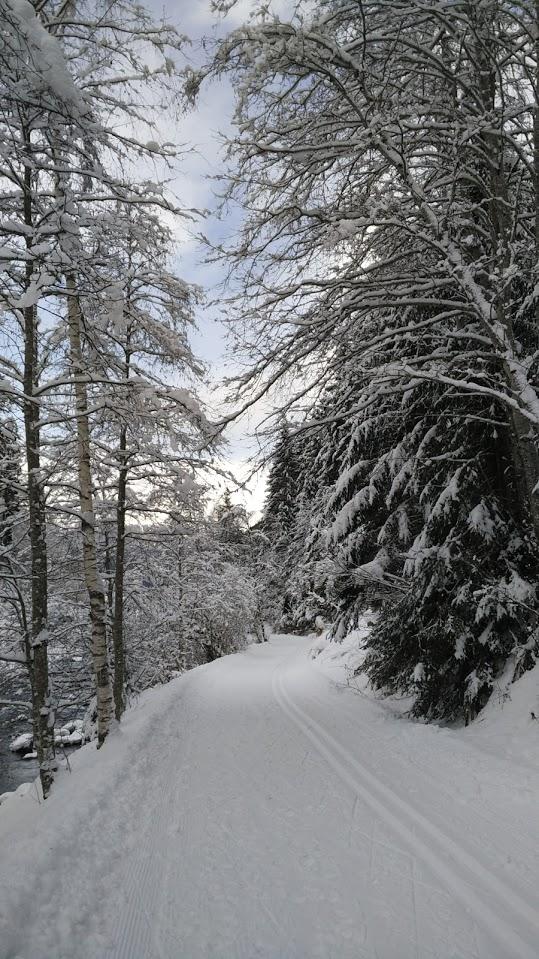 Le piste da sci da fondo che affiancano il torrente presso Hopfgarten. Ben battute ed aperte anche a chi vuol passeggiare lungo la Defereggental.