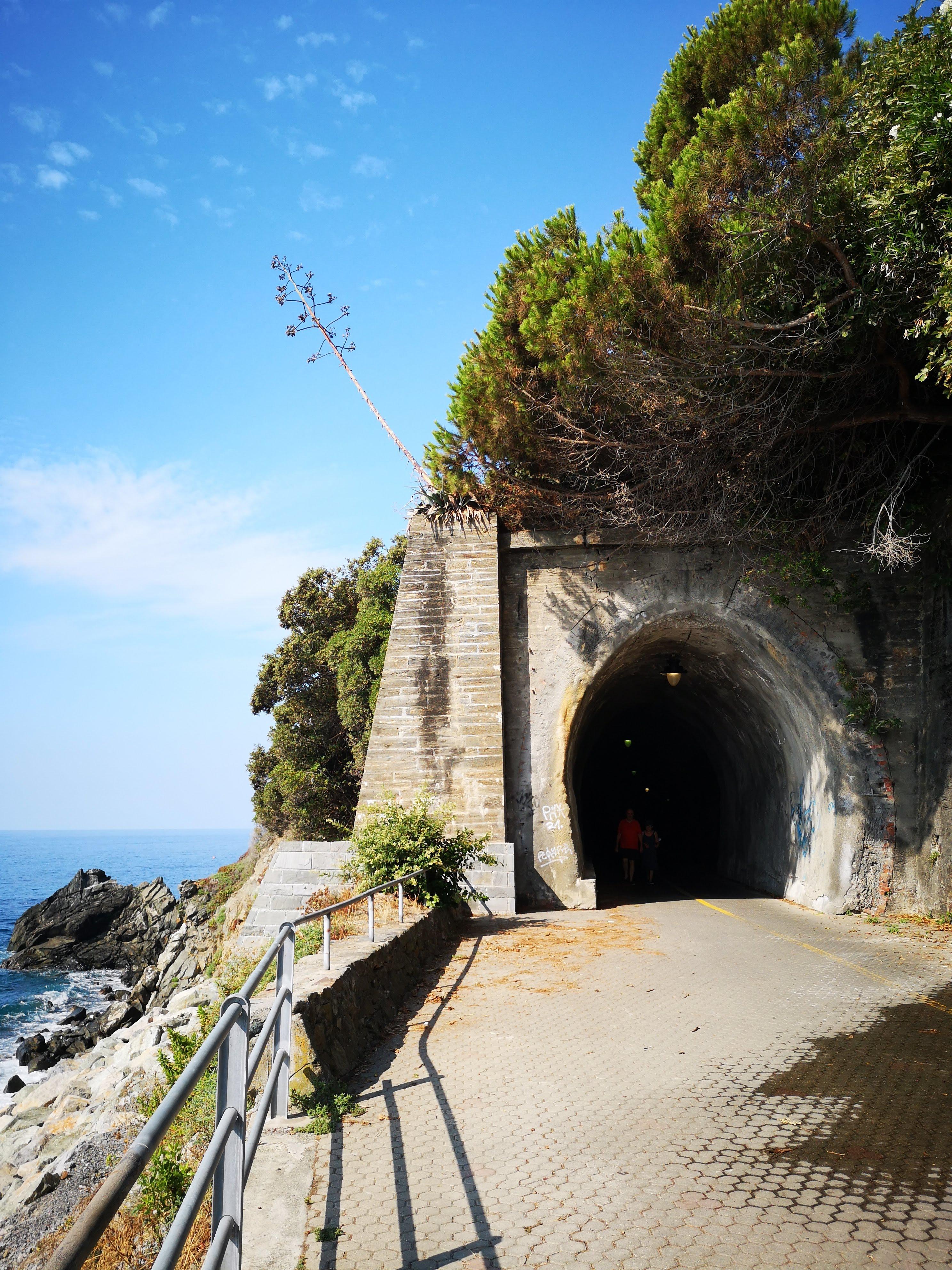 Ecco una delle prime gallerie lungo la ciclabile, contornata dalla tipica vegetazione della zona.
