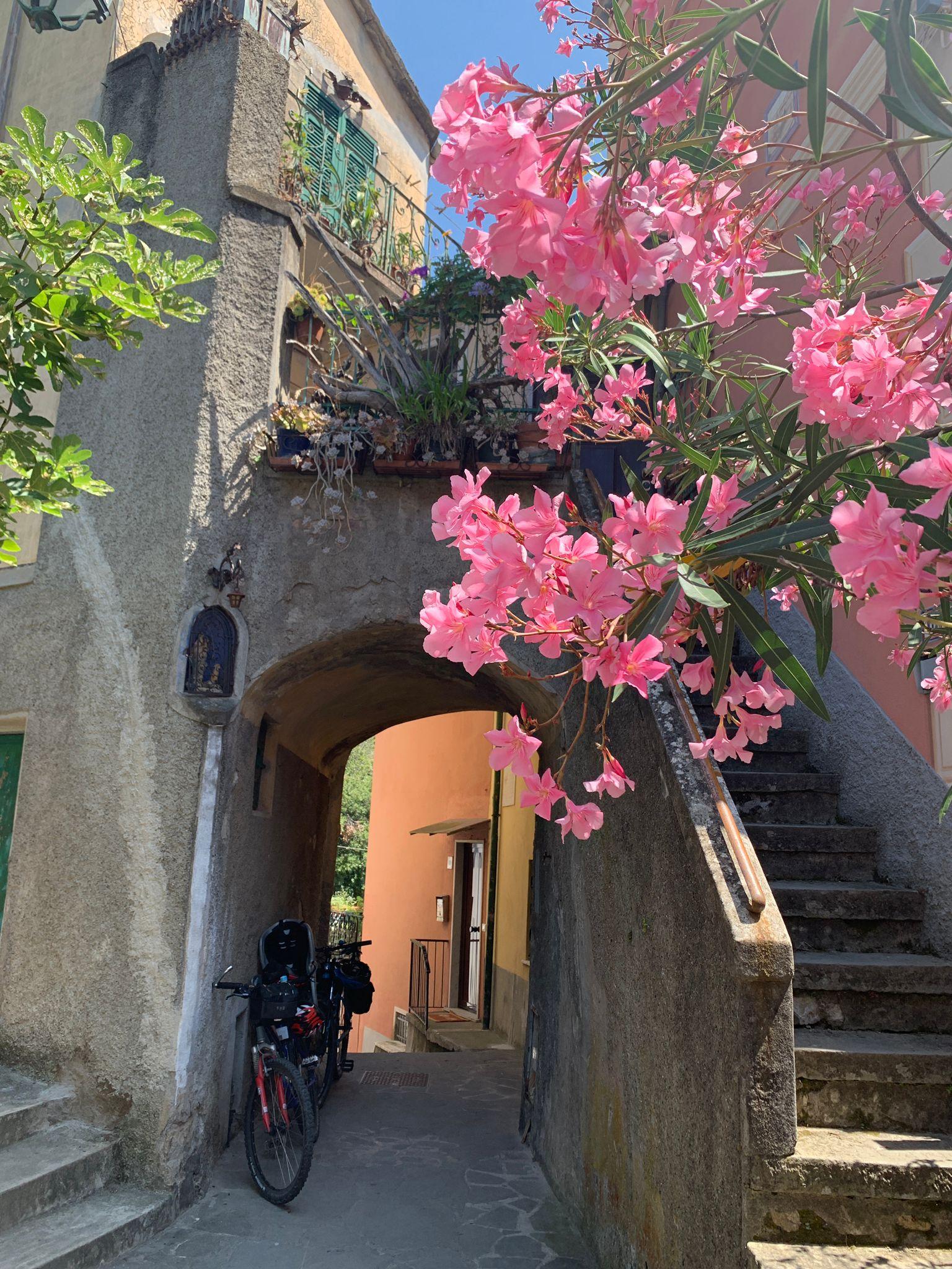 Al termine della Ciclopedonabile Maremonti si può salire al piccolo borgo di Anzo.